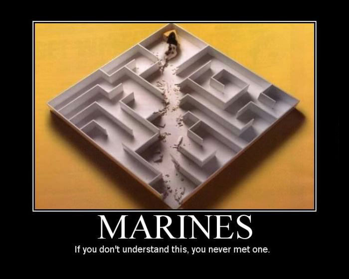 marines, if you don't understand, you've never met one, motivation