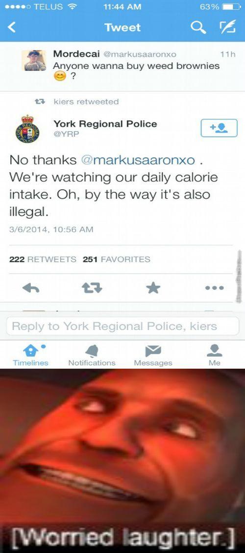 anyone wanna buy weed brownies?, twitter, york regional police responds to drug dealer tweet