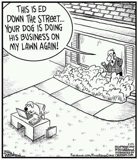 this is ed from down the street, your dog is doing business on my lawn again, comic