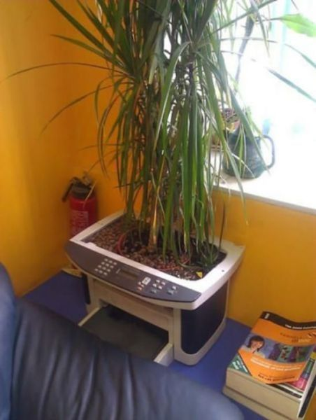 how to put that old xerox printer to good use as a plant pot