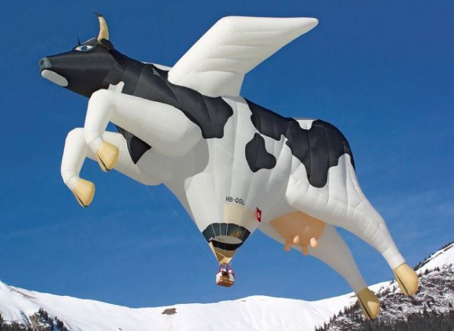 giant cow hot air balloon