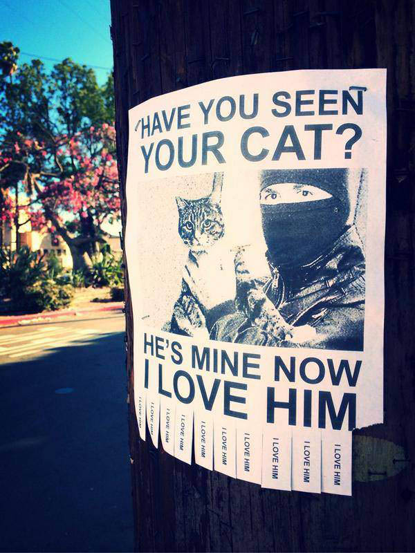 have you seen your cat?, he's mine now i love him, sign, lol, ninja