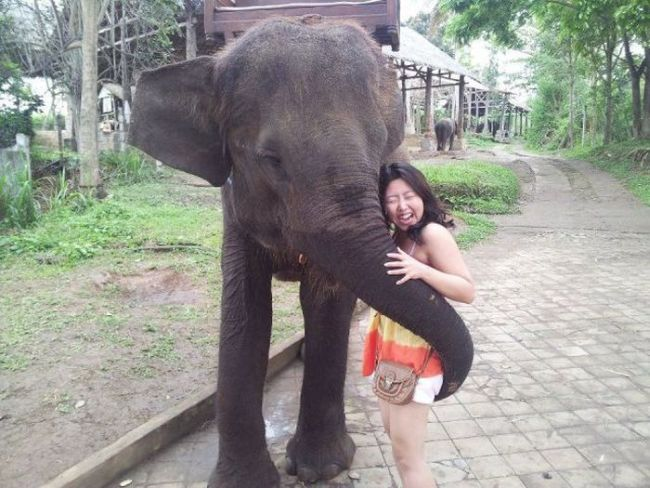 horny elephant gives this girl the reach around