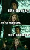 hermione i am gay, are you kidding me?, no i'm fucking sirius