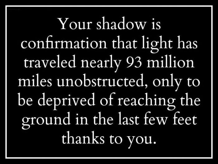 your shadow is confirmation that light has traveled nearly 93 million miles unobstructed, only to be deprived of reaching the ground in the last few feet thanks to you