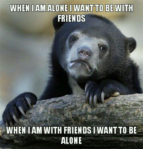 when i am alone i want to be with friends, when i am with friends i want to be alone, confession bear, meme