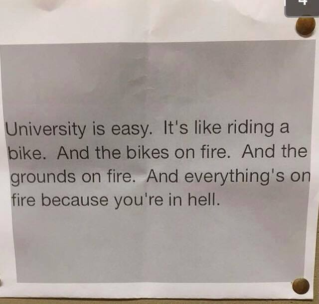 university is easy, it's like riding a bike, and the bike is on fire and the ground is on fire, and everything's on fire because you're in hell