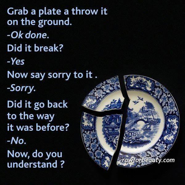 grab a plate and throw it on the ground, say sorry to it, did it go back to the way it was before?, now do you understand