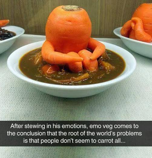 after stewing in his emotions, emo veg comes to the conclusion that the root of the world's problems is that people don't seem to carrot all