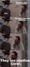 what don't crabs give to charity, because they are shellfish, they are shelfish coral, the walking dead, meme, joke