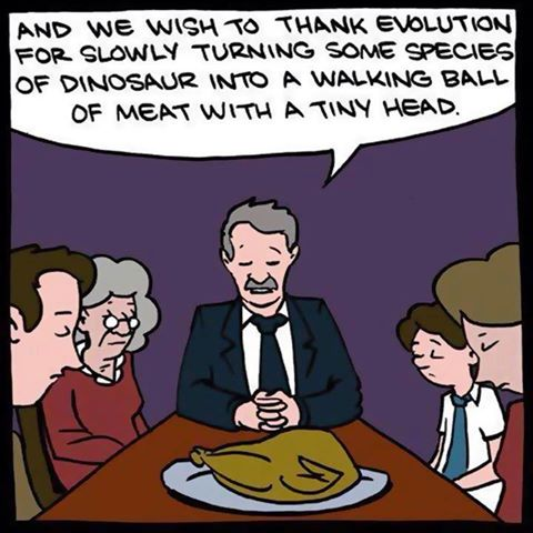 and we wish to thank evolution for slowly turning some species of dinosaur into a walking ball of meat with a tiny head, comic