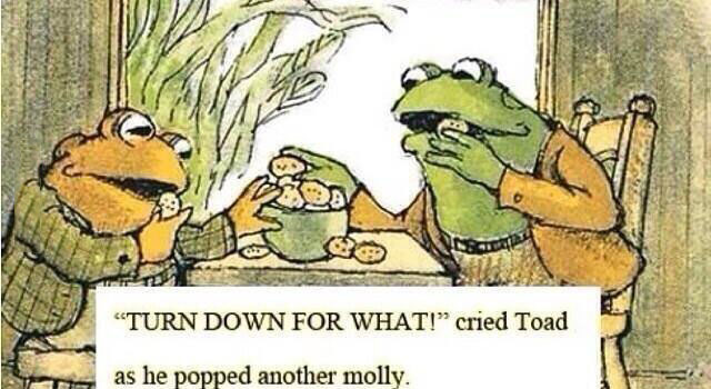 turn down for what!, cried toad as he popped another molly