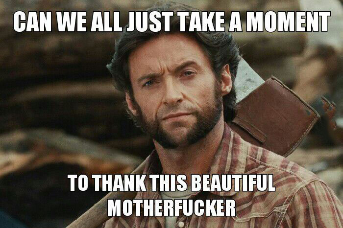 can we all just take a moment to thank this beautiful motherfucker, for playing wolverine whenever asked, hugh jackman, meme