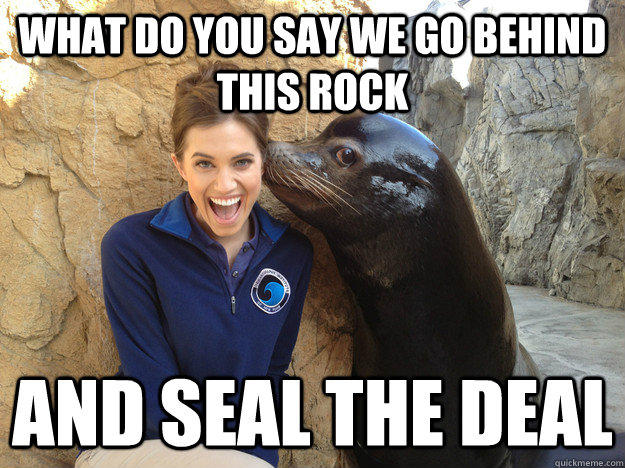 what do you say we go behind this rock and seal the deal, pick up line seal, pun, meme