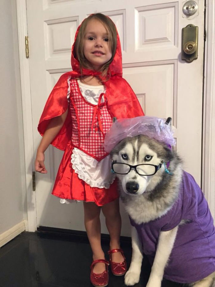 little red riding hood and the wolf, halloween costumes fro kids and dogs