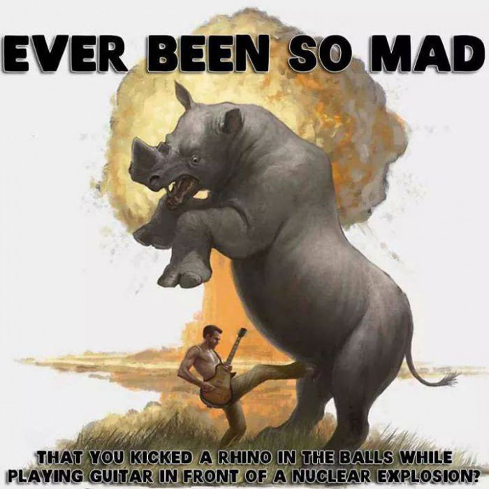 ever been so mad that you kicked a rhino in the balls while playing guitars in front of a nuclear explosion