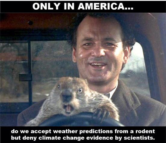 only in america do we accept weather predictions from a rodent but deny climate change evidence by scientists