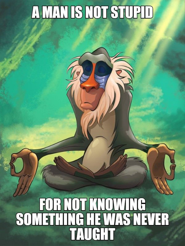 a man is not stupid for not knowing something he was never taught, rafiki meditating, meme