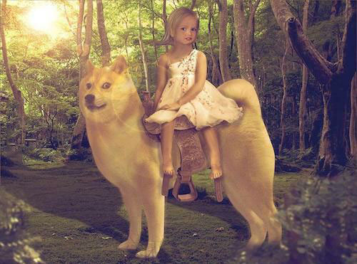 welcome to the internet, i will be your guide, skeptical disney girl riding doge