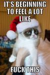 it's beginning to feel a lot like fuck this, grumpy cat, meme