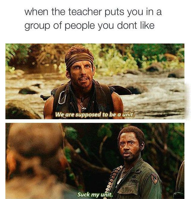 when the teach puts you in a group of people you don't like, we are supposed to be a unit, suck my unit