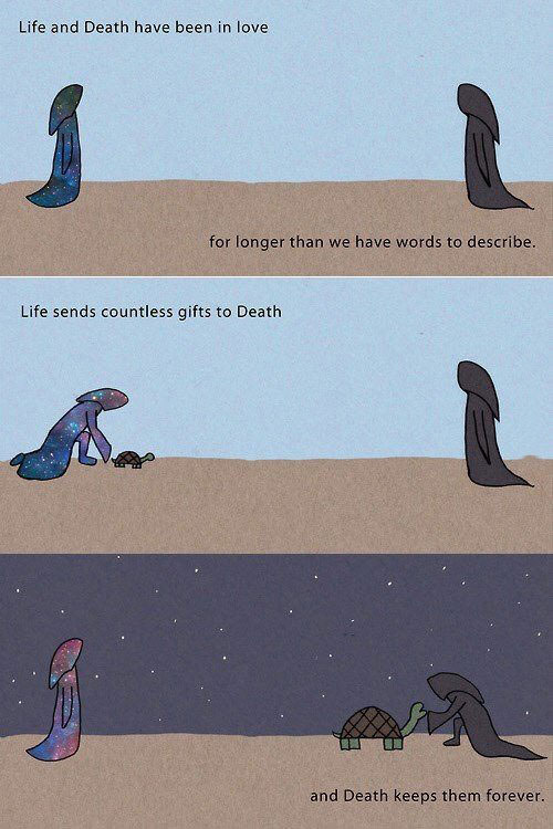 life and death have been in love for longer than we have words to describe, life sends countless gifts to death, and death keeps them forever