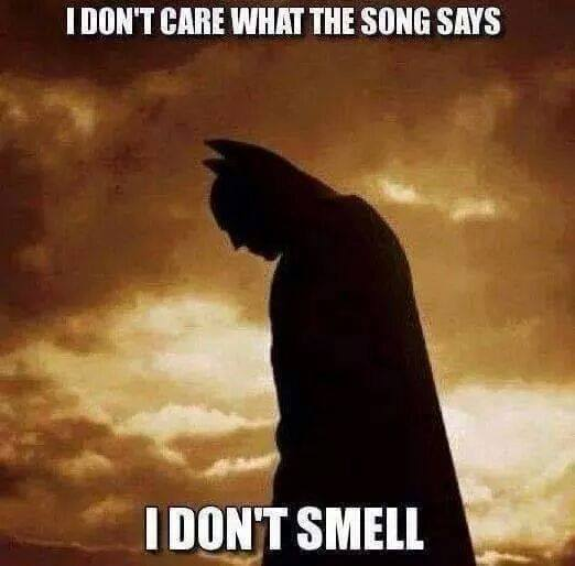 i don't care what the song says, i don't smell, batman