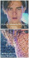 a pic of leonardo dicaprio crying, made of pics of oscar winners