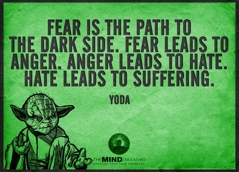 fear is the path to the dark side, fear leads to anger and anger leads to hate, hate leads to suffering, yoda