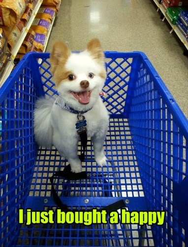 i just bought a happy, cute dog in shopping cart