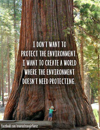 i don't want to protect the environment, i want to create a world where the environment doesn't need protecting