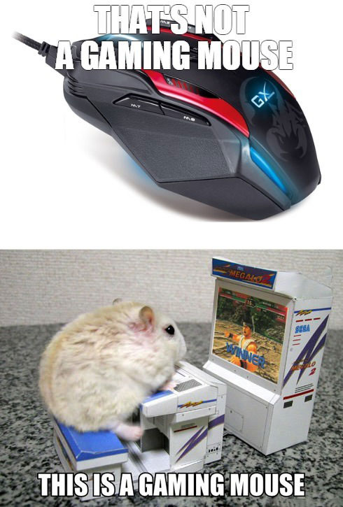 that's not a gaming mouse, this is a gaming mouse, meme