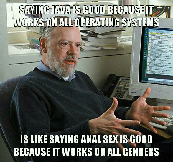 saying java is good because it works on all operating systems is like saying anal sex is good because it works on all genders, meme