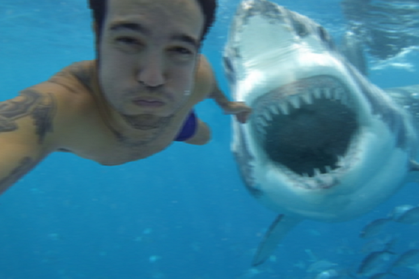 when selfies go wrong: 13 deadly selfies