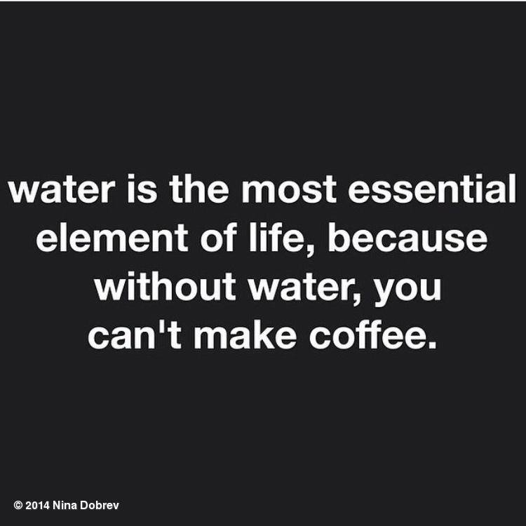 water in the most essential element of life, because without water you can't make coffee