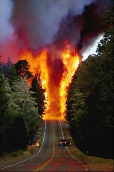 forest fire makes road look like it is the highway to hell
