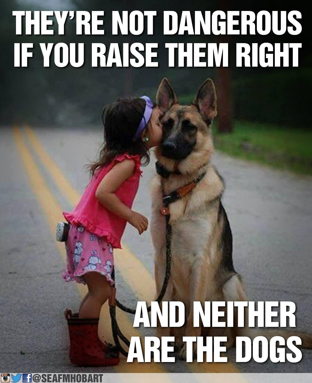 Смотреть dog and a girl 7 фотография