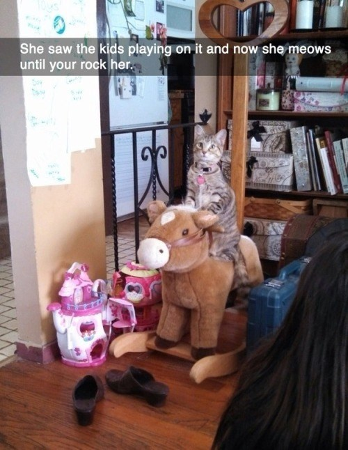 she saw the kids playing on it, now she meows until you rock her, cat on rocking horse