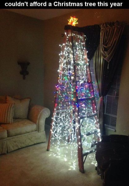 couldn't afford a christmas tree this year, ladder with christmas lights on it