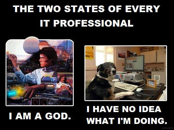 the two states of every it professional, i am a god, i have no idea what i'm doing