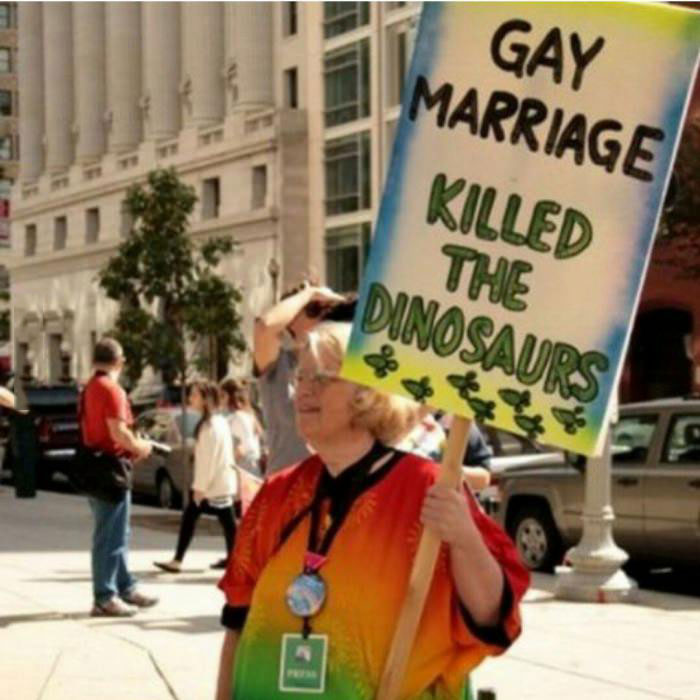 gay marriage killed the dinosaurs, protest sign