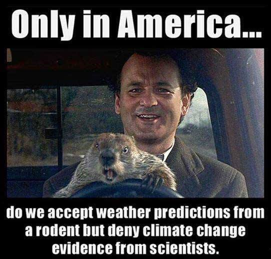 only in america do we accept weather predictions from a rodent but deny climate change evidence from scientists