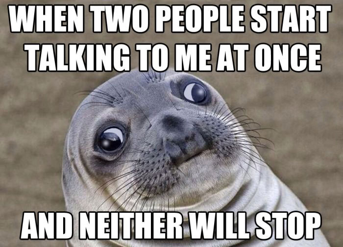 when two people start talking to me at once and neither will stop, awkward moment seal, meme