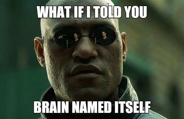 what if i told you that the brain named itself, morpheus, meme