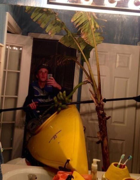 selfie in a kayak with a palm tree in the bathroom