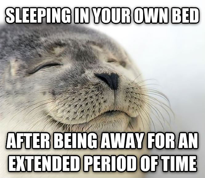 sleeping in your own bed after being away for an extended period of time, satisfied seal, meme