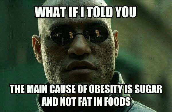 what if i told you the main cause of obesity is sugar and not fat in foods, morpheus, meme