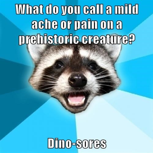 what do you call a mild ache or pain on a prehistoric creature?, dino-sores, lame pun coon, meme