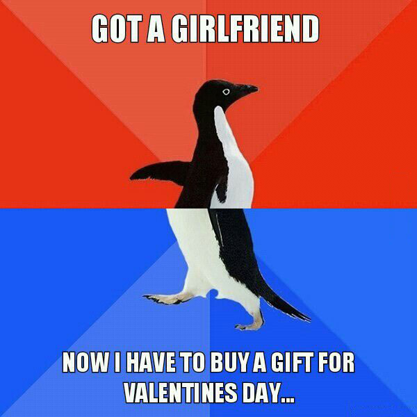 got a girlfriend, now i have to buy a gift for valentine's day, socially awkward penguin, meme