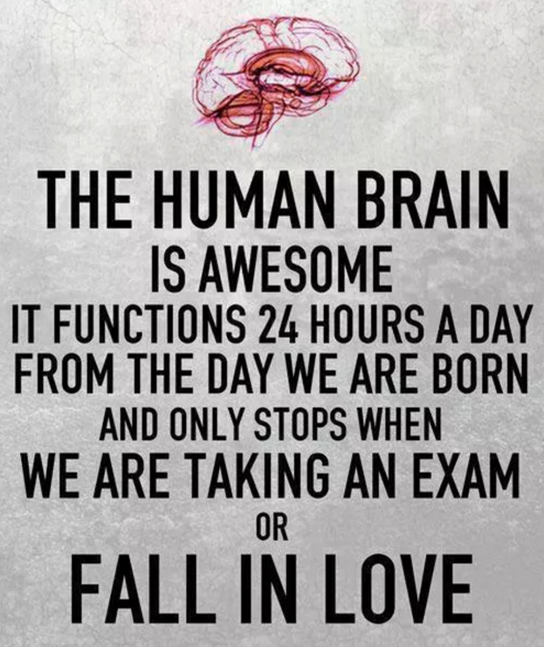 the human brain is awesome, it functions 24 hours a day from the day we are born and only stops when we are taking an exam or fall in love
